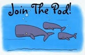 Resized Whale Pod